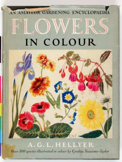 Flowers in Colour: an amateur gardening encyclopedia