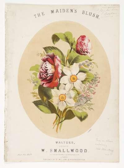 The Maiden's Blush