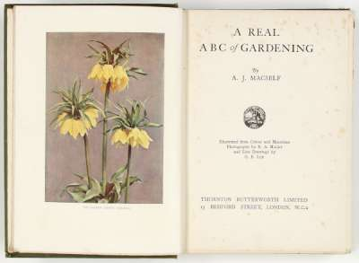 A Real ABC of Gardening